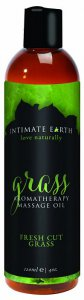Intimate Earth INTIMATE EARTH GRASS MASSAGE OIL 4OZ #IE048120
